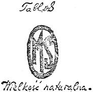 ilustracja_1
